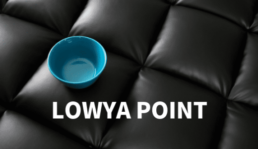 LOWYA(ロウヤ)ポイントとは?レビューを投稿して10%ポイント還元!【ポイントの使い方】