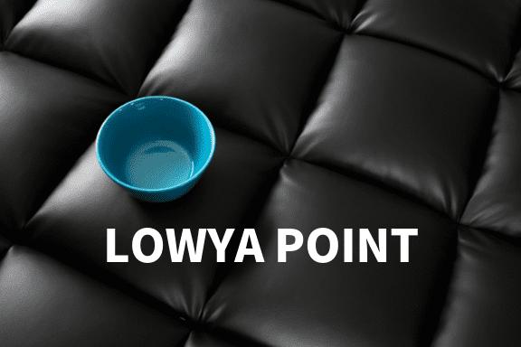 LOWYAポイントとは