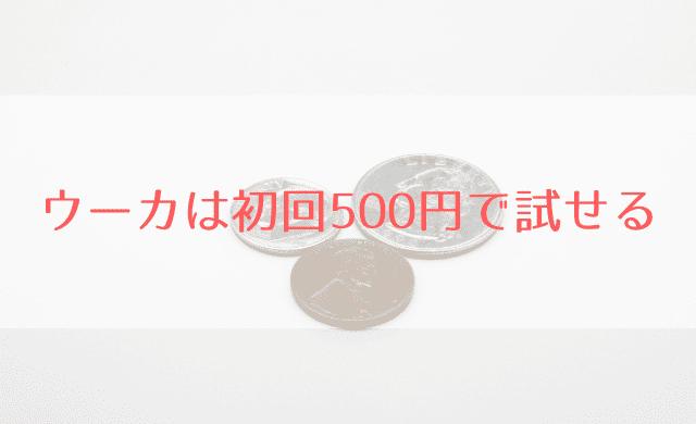 ウーカは初回500円